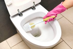 Best Drain Cleaner for Toilets