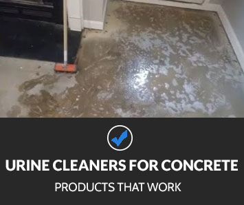 Best Urine Enzyme Cleaners for Concrete
