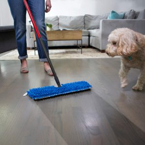 Cleaner for Dog Urine on Hardwood Floors