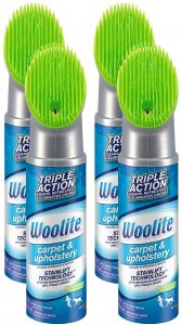 Woolite Carpet and Upholstery Cleaner Stain Remover
