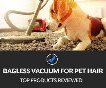 Best Bagless Vacuum for Pet Hair